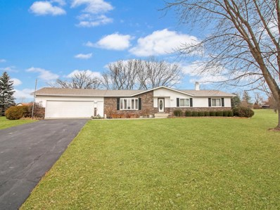 24186 W Tracy Lane, Antioch, IL 60002 - MLS#: 10143575