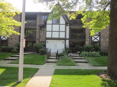 10221 Major Avenue UNIT 202, Oak Lawn, IL 60453 - MLS#: 10143833
