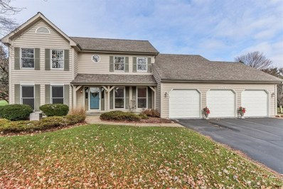 23764 Deer Chase Lane, Naperville, IL 60564 - MLS#: 10143916