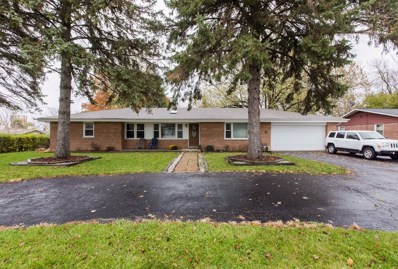 203 Coldren Drive, Prospect Heights, IL 60070 - MLS#: 10144053