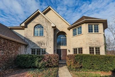 1700 Maple Avenue, Downers Grove, IL 60515 - #: 10144104