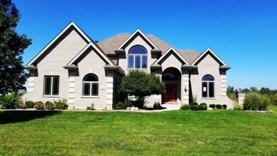 13320 W Valley View Drive, Homer Glen, IL 60491 - #: 10144149