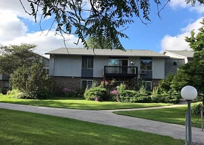 952 E Old Willow Road UNIT 203, Prospect Heights, IL 60070 - MLS#: 10144379