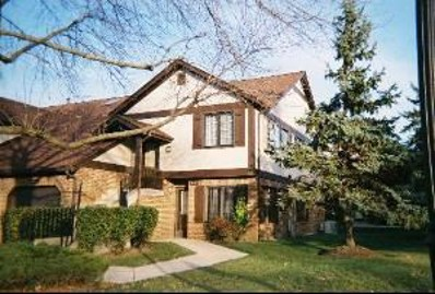 13327 S Oak Hills Parkway UNIT VILLA2, Palos Heights, IL 60463 - #: 10145161