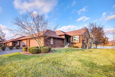 8900 Clearview Drive, Orland Park, IL 60462 - #: 10145545