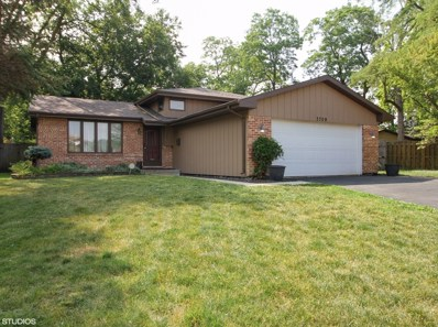3709 Morgan Court, Steger, IL 60475 - #: 10145695