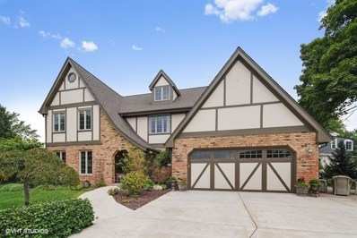 3649 Red Bud Court, Downers Grove, IL 60515 - #: 10145789