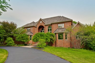 5864 Rock Dove Court, Long Grove, IL 60047 - #: 10145836