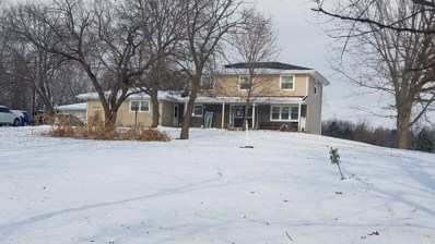 13036 W Maple Road, Mokena, IL 60448 - #: 10146148