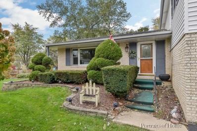 Woods, Wheaton, IL 60188 - #: 10146539