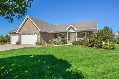 1053 Hummingbird Lane, Peotone, IL 60468 - #: 10148313