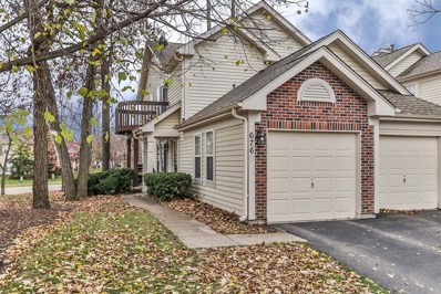 676 Shady Oaks Court, Elgin, IL 60120 - #: 10148440