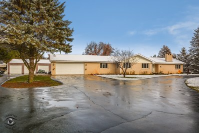 6412 W North Peotone Road, Peotone, IL 60468 - #: 10148901