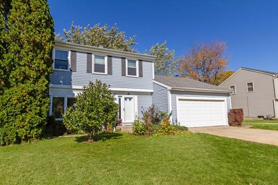348 N Walnut Lane, Schaumburg, IL 60194 - #: 10149069