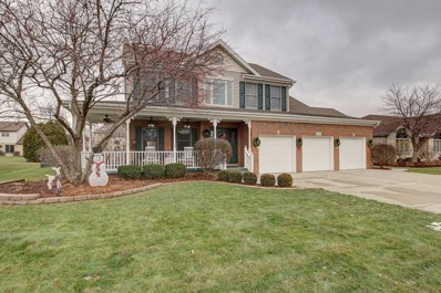 24160 Brown Lane, Plainfield, IL 60586 - #: 10149391