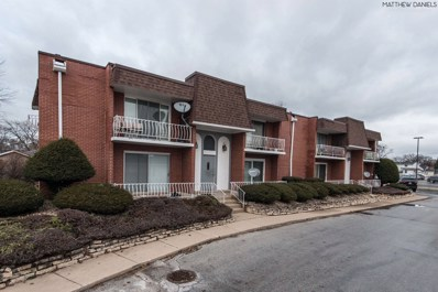 18203 Exchange Avenue UNIT 1, Lansing, IL 60438 - MLS#: 10149617
