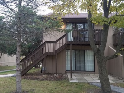 46 Nassau Colony UNIT 10, Fox Lake, IL 60020 - MLS#: 10150194