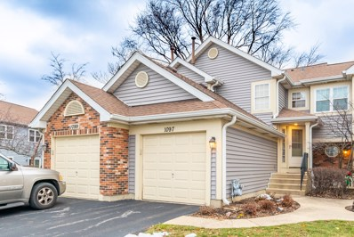 1097 Rockport Drive UNIT 5-2, Carol Stream, IL 60188 - #: 10150458