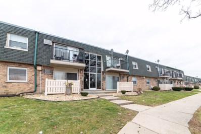 8423 W 99TH Terrace UNIT 215, Palos Hills, IL 60465 - #: 10150658