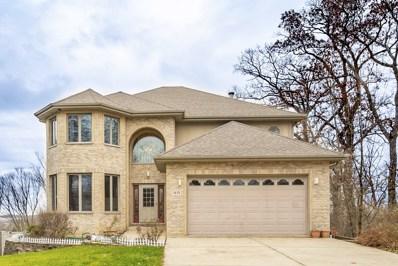 1410 Oak Ridge Court, Willow Springs, IL 60480 - #: 10151227