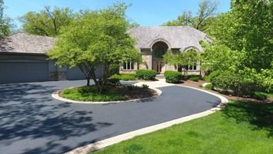 37090 N Black Velvet Lane, Wadsworth, IL 60083 - #: 10151266