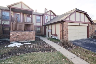 365 Farnsworth Court UNIT 7, Glen Ellyn, IL 60137 - #: 10151320