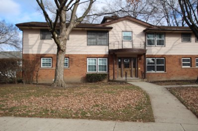 232 Washington Square UNIT B, Elk Grove Village, IL 60007 - #: 10151638