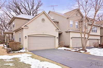 5221 Granite Court UNIT 5221, Prairie Grove, IL 60012 - #: 10152255