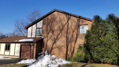 404 Brandy Drive UNIT A, Crystal Lake, IL 60014 - MLS#: 10152303