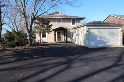 22 Hole In The Wall Court, Wilmington, IL 60481 - #: 10153380