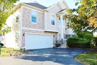 925 Summit Creek Drive, Shorewood, IL 60404 - #: 10153506