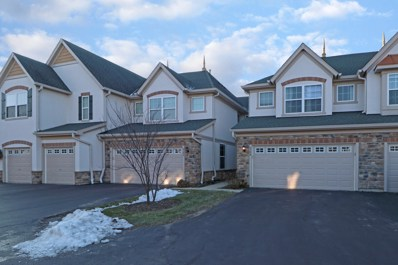 2190 Shadow Creek Court, Vernon Hills, IL 60061 - #: 10153574
