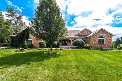 10605 Happy Trail, Woodstock, IL 60098 - #: 10153675