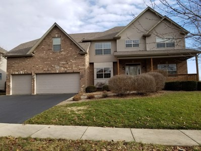 12833 Pintail Road, Plainfield, IL 60585 - #: 10154446
