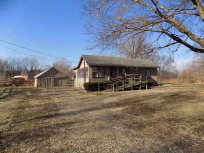 6465 Gun Club Road, Morris, IL 60450 - #: 10154572