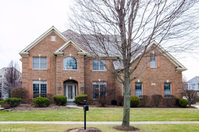 17 Persimmon Lane, South Elgin, IL 60177 - #: 10154800
