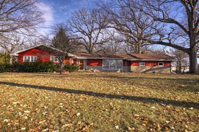 11320 N Tabler Road, Minooka, IL 60447 - #: 10155912