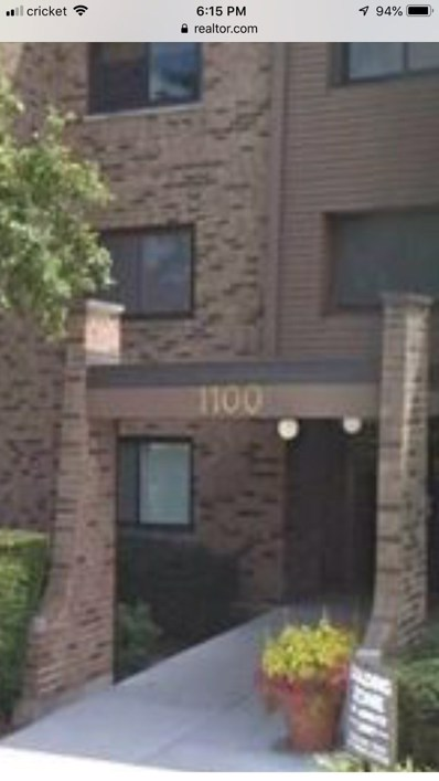 1100 E Randville Drive UNIT 102, Palatine, IL 60074 - MLS#: 10156042
