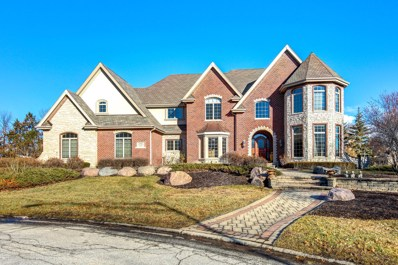 10900 Crystal Meadow Court, Orland Park, IL 60467 - #: 10157406