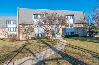 2021 Ammer Ridge Court UNIT 102, Glenview, IL 60025 - #: 10157461