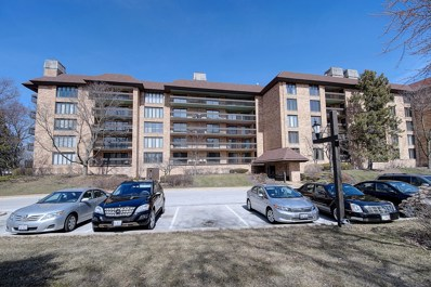 1621 Mission Hills Road UNIT 202, Northbrook, IL 60062 - #: 10157827
