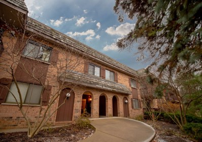8000 Woodglen Lane UNIT 109, Downers Grove, IL 60516 - MLS#: 10159843