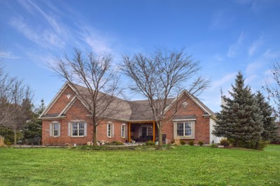 19N055 W Woodview, Hampshire, IL 60140 - #: 10159971