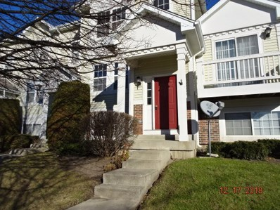 682 Holiday Lane UNIT 52-2, Hainesville, IL 60073 - #: 10160492