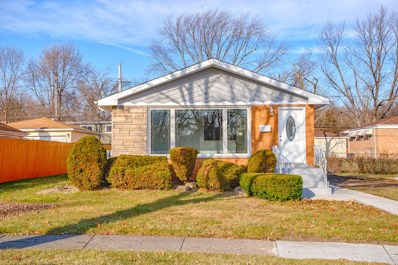 209 Lynn Lane, Chicago Heights, IL 60411 - #: 10161619