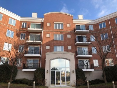 351 Town Place Circle UNIT 206, Buffalo Grove, IL 60089 - MLS#: 10161806