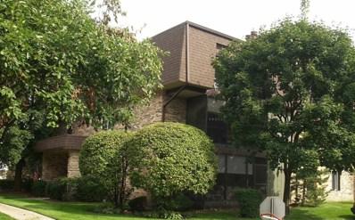11141 East Road UNIT E, Palos Hills, IL 60465 - #: 10161822