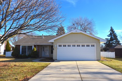 317 Islington Lane, Schaumburg, IL 60193 - #: 10162772
