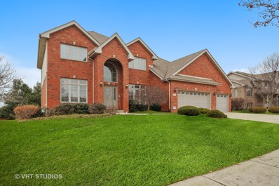 22540 Parkview Lane, Frankfort, IL 60423 - MLS#: 10162780