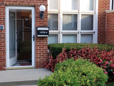 1328 S Federal Street UNIT C, Chicago, IL 60605 - #: 10164361